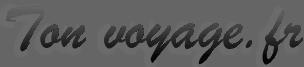 logo-tonvoyage